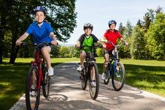 Велосипед семьи Стоковая Фотография