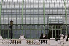 вена palmenhaus Стоковая Фотография