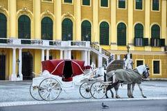 вена schonbrunn дворца Стоковая Фотография