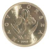Венгерская монетка форинта Стоковая Фотография