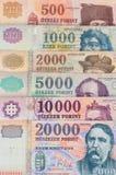 Венгерские банкноты форинта - предпосылка Стоковая Фотография