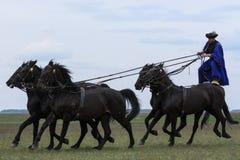Венгерские ковбои стоковая фотография