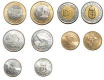 Венгерские монетки форинта Стоковые Фотографии RF
