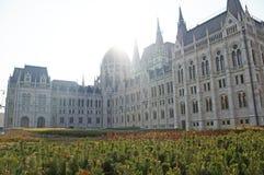 Венгерский парламент окружен парком осени Стоковая Фотография RF