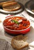 Венгерское блюдо Стоковые Изображения RF