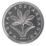 Венгерское foint монетки Стоковая Фотография