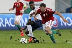 Венгрия против Нидерландов Норвегии UEFA евро квалификатора плей-оффа футбольный матч 2016 Стоковое Изображение RF