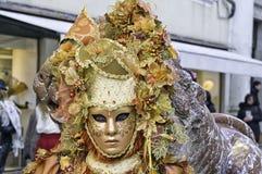Венецианская оранжевая маска с ягодами стоковое изображение rf