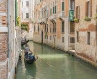 Венецианский gondolier бить гондолу через зеленый цвет Стоковое Изображение