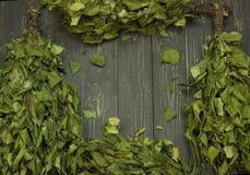 Веник березы Стоковая Фотография RF
