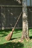 Веник ротанга подпиранный против дерева стоковая фотография