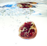 Вениса в воде Стоковая Фотография RF