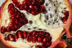 Вениса плодоовощ Стоковое Изображение RF