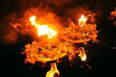 2 венка горя на темной воде в вечере Стоковое Изображение RF