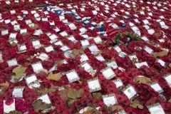 Венки и маки мака среди листьев на военном мемориале на Уайтхолле Лондоне Англии Великобритании Стоковое Изображение