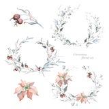 Венки и Poinsettia рождества акварели стоковая фотография rf