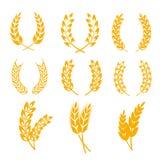 Венки ушей пшеницы Rye vector элементы для ярлыков хлеба и пива, логотипов бесплатная иллюстрация