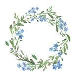 Венок акварели голубой незабудки с зелеными листьями на белой предпосылке бесплатная иллюстрация