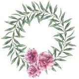 Венок акварели флористический Вручите покрашенную границу с цветками олеандра при листья и ветвь изолированные на белой предпосыл Стоковые Изображения