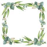 Венок акварели квадратный с листьями и ветвями евкалипта иллюстрация вектора