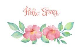 Венок акварели красочных цветков Стоковые Фотографии RF