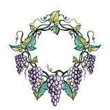 Венок акварели от виноградины и листьев бесплатная иллюстрация