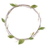 Венок акварели при листья и ветви изолированные на белом ба Стоковое Изображение