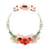 Венок акварели с маком, маленькими красными цветками и листьями зеленого цвета бесплатная иллюстрация
