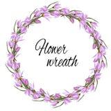 Венок весны флористический нежных розовых цветков для украшения, карт, приветствий Иллюстрация вектора розовых крокусов бесплатная иллюстрация