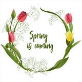 Венок весны цветет - плакат, приглашение или знамя иллюстрация штока