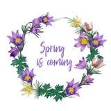 Венок весны цветет - плакат, приглашение или знамя иллюстрация вектора