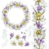 Венок весны Narcissus и крокуса, щетка и элементы иллюстрация штока