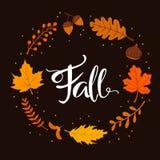 Венок ветвей листьев осени падения Стоковое Изображение RF