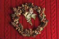 Венок ели рождества Стоковые Изображения RF