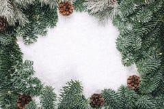 Венок ели рождества Стоковая Фотография RF