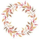 Венок листвы свадьбы рамки падения осени листьев акварели покрашенный рукой оранжевый Стоковая Фотография