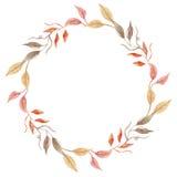 Венок листвы свадьбы фестиваля сбора рамки падения осени листьев акварели покрашенный рукой оранжевый Стоковые Фото