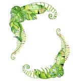 Венок листьев акварели тропический Стоковая Фотография RF