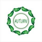 Венок листьев 2 зеленого цвета Стоковые Изображения