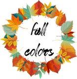 венок листьев конструкции осени цветастый Венок красочных листьев цвет теплый Иллюстрация штока