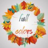 венок листьев конструкции осени цветастый Венок красочных листьев цвет теплый Бесплатная Иллюстрация