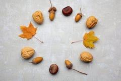 Венок листьев осени и жолудей на серой предпосылке, плоском положении, взгляд сверху стоковое фото rf