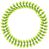 венок листьев иллюстрация штока