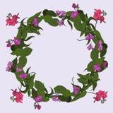 Венок орхидей бесплатная иллюстрация