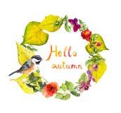 Венок осени - птица, цветки, желтый цвет выходит Флористическая граница акварели Стоковые Фотографии RF