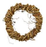 Венок от лозы, изолированной без тени Естественное decorat Стоковые Изображения RF