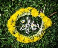 Венок одуванчиков с маргаритками вол-глаза в зеленой траве Стоковое Изображение