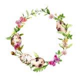 Венок пасхи с яичками в траве, цветками рамка круглая акварель Стоковое Изображение