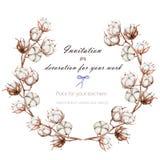 Венок, рамка круга с хлопком цветет ветви, рука нарисованная на белой предпосылке бесплатная иллюстрация