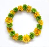 Венок рамки состава цветка круглый Стоковое фото RF